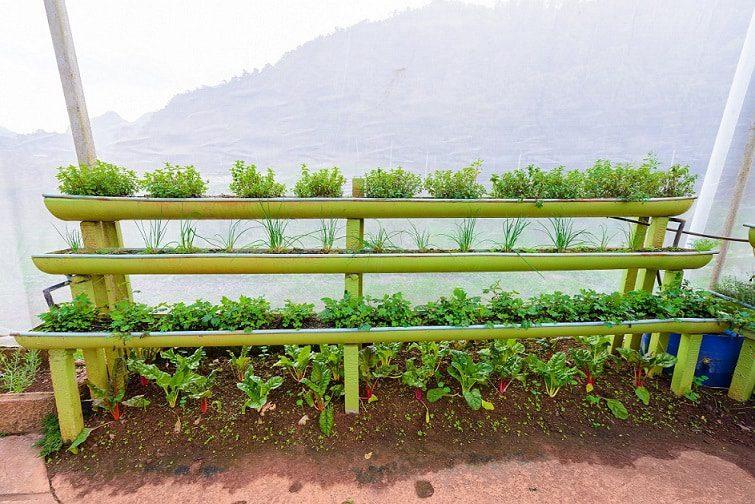 how to create a portable vertical garden
